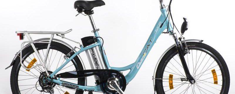 Achat/vente vélo électrique Flying cat style homme femme